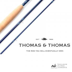Thomas & Thomas Paradigm Blanks